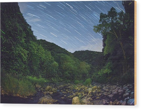 Star Trails Over A River With Fireflies Wood Print