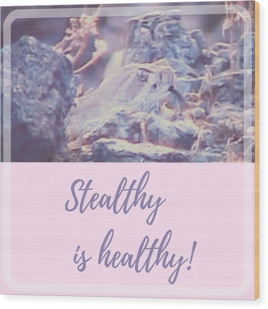 Wood Print featuring the photograph Stealthy Is Healthy by Judy Kennedy