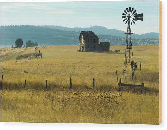 Steinbeck Homestead W Windmill And Fence Wood Print