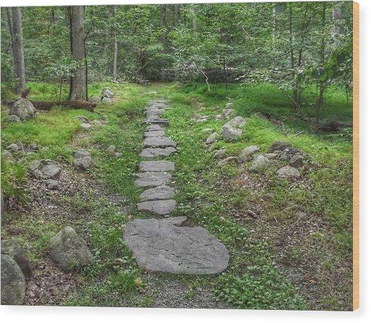 Stepping Stone Path - Kinnelon Wood Print