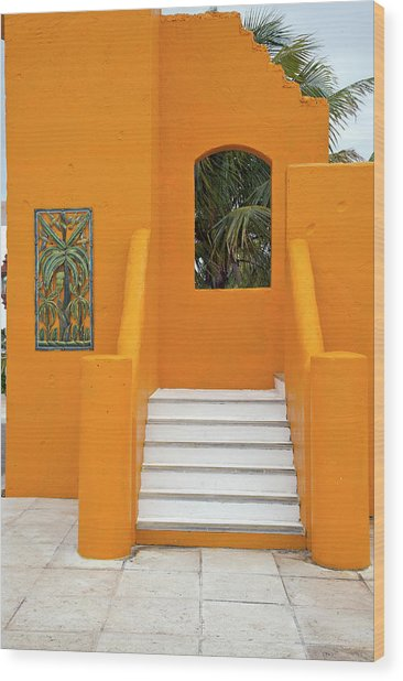 Steps, Patterns, Colors Of The Wood Print by Barry Winiker