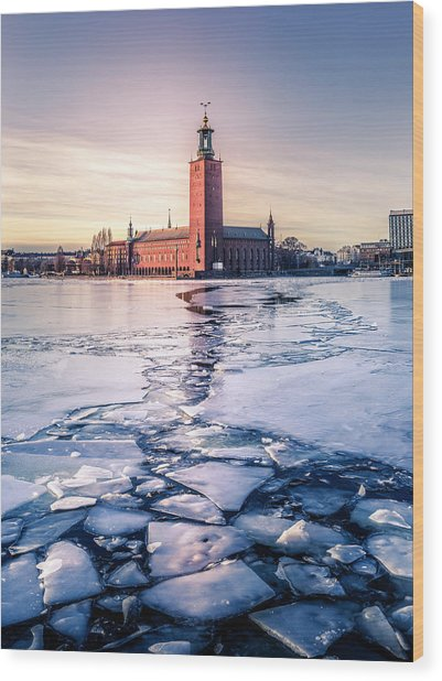Stockholm City Hall In Winter Wood Print