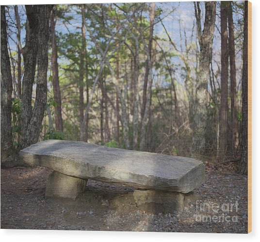 Wood Print featuring the photograph Stone Bench by Patrick M Lynch