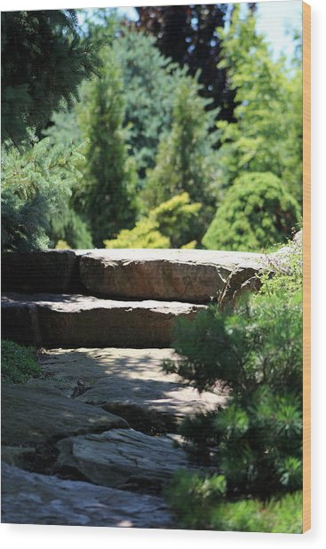 Stone Stairs In Chicago Botanical Gardens Wood Print