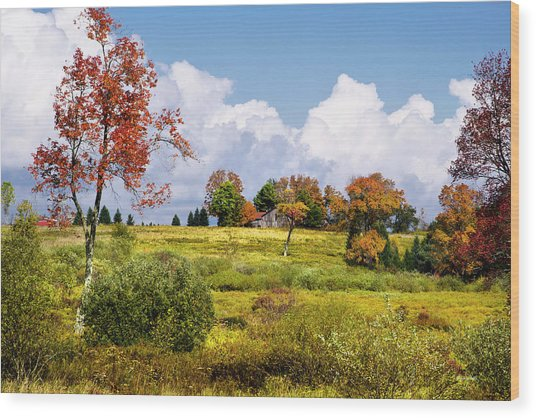 Wood Print featuring the photograph Storm Clouds Over Country Landscape by Christina Rollo