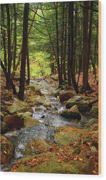 Wood Print featuring the photograph Stream Rages Vertical Format by Raymond Salani III