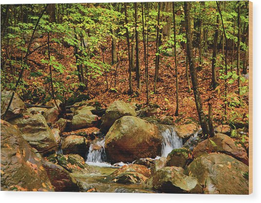 Wood Print featuring the photograph Stream Rages In Ma by Raymond Salani III