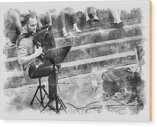 Street Musician In Florence Wood Print