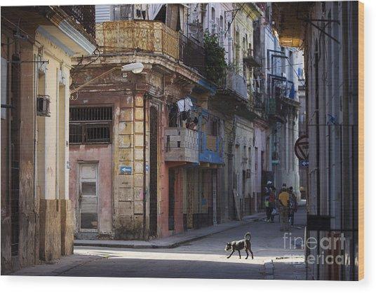 Street Of Havana, Cuba Wood Print