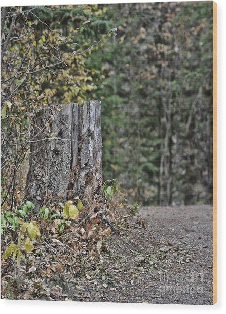 Stumped Wood Print