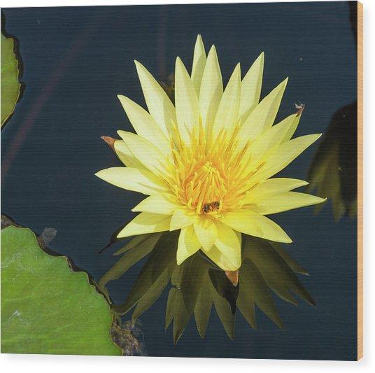 Stunning In Yellow Wood Print