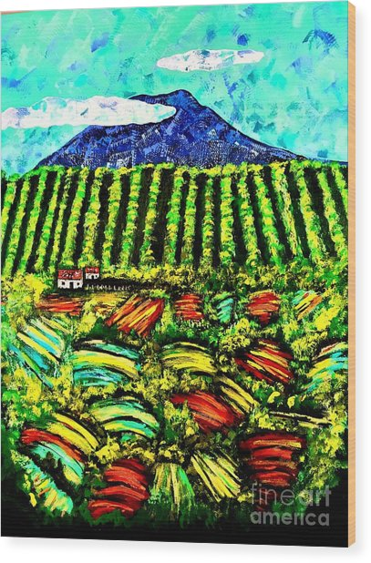 Sumatra Coffee Plantation Wood Print