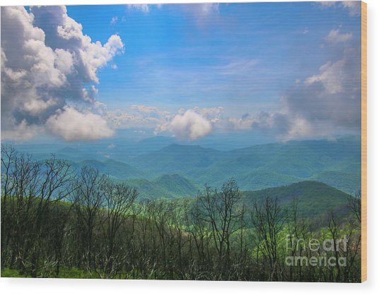Summer Mountain View Wood Print