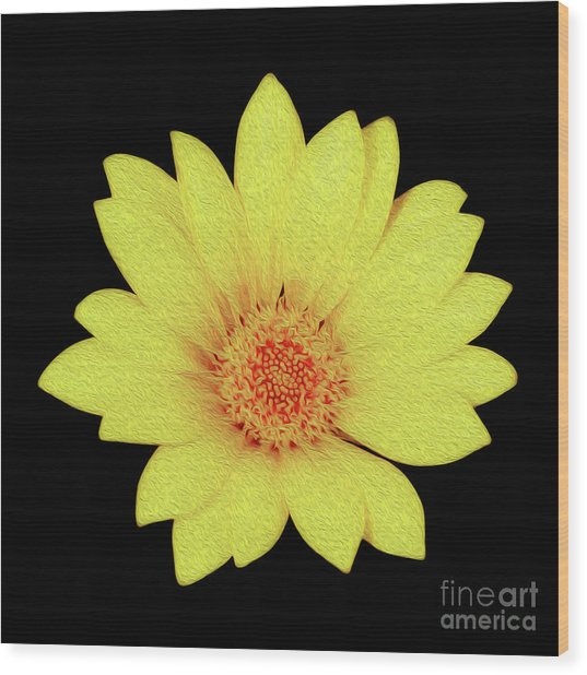 Wood Print featuring the digital art Sun Flower by Kenneth Montgomery