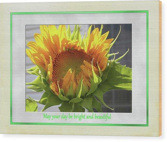 Sunflower Birthday Wood Print