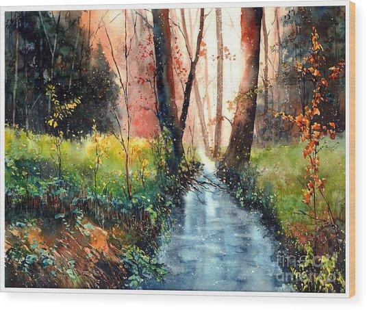 Sunlight Colorful Path Wood Print
