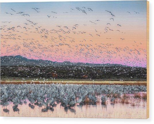Sunrise At The Crane Pool Wood Print