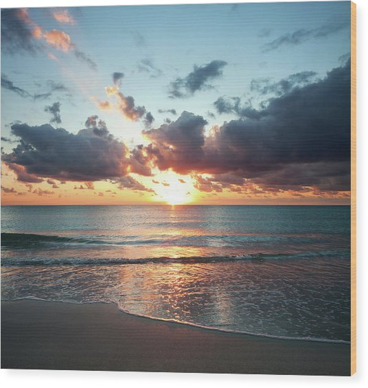 Sunrise In Miami Wood Print by Tovfla