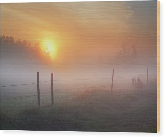 Sunrise Over Morning Pasture Wood Print