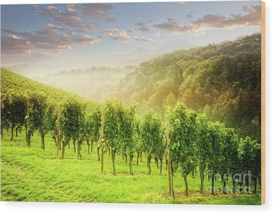 Wood Print featuring the photograph Sunrise Over Styria by Scott Kemper