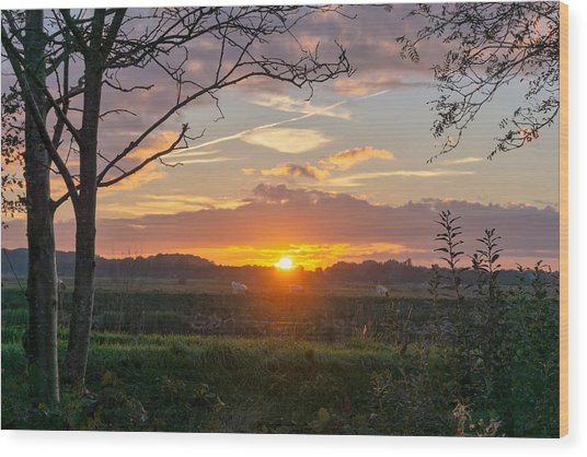 Wood Print featuring the photograph Sunset by Anjo Ten Kate
