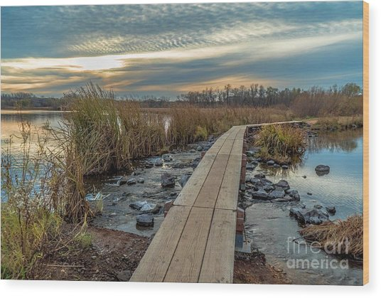 Sunset At Purgatory Creek Wood Print