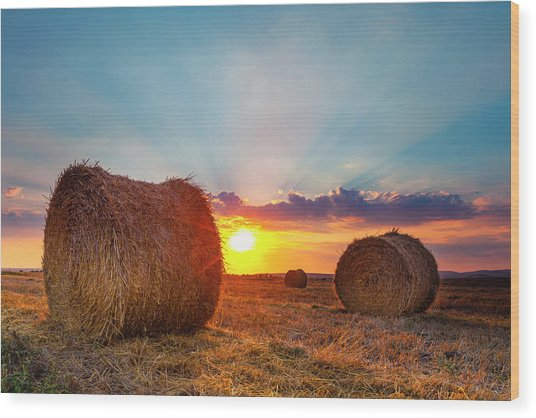 Sunset Bales Wood Print
