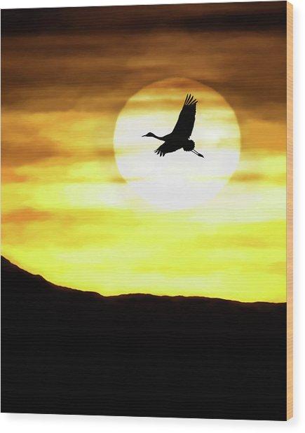 Sunset Flyway Wood Print