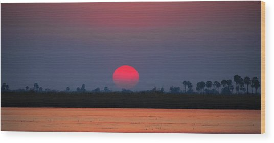 Sunset In Botswana Wood Print