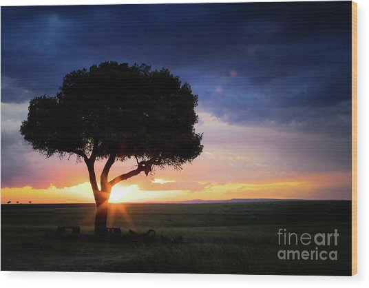 Sunset In The Masai Mara Wood Print