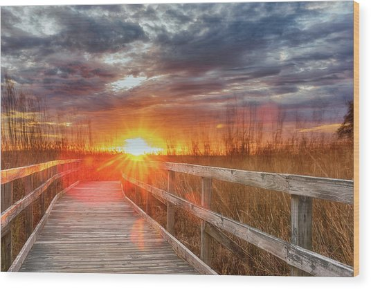 Sunset Walk Wood Print
