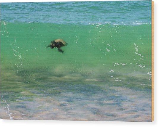 Surfing Turtle Wood Print