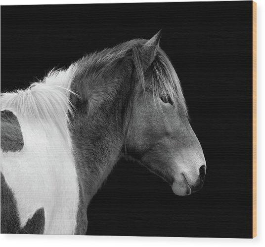Susi Sole Portrait In Black And White Wood Print