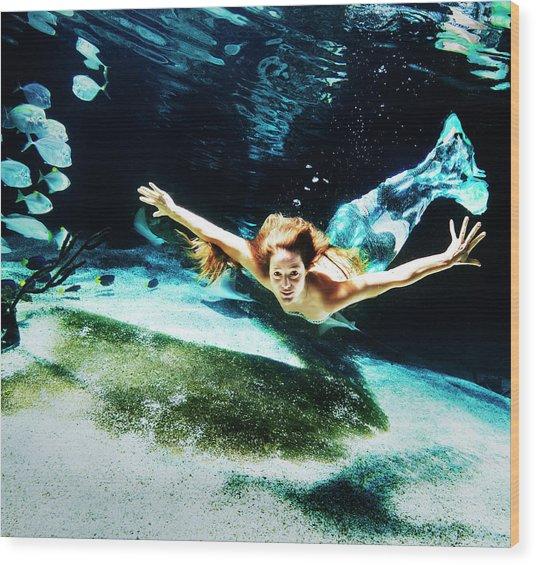 Swimming Mermaid Underwater Wood Print
