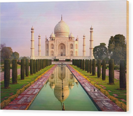 Taj Mahal Spectacular Early Morning View Wood Print by Chuvipro