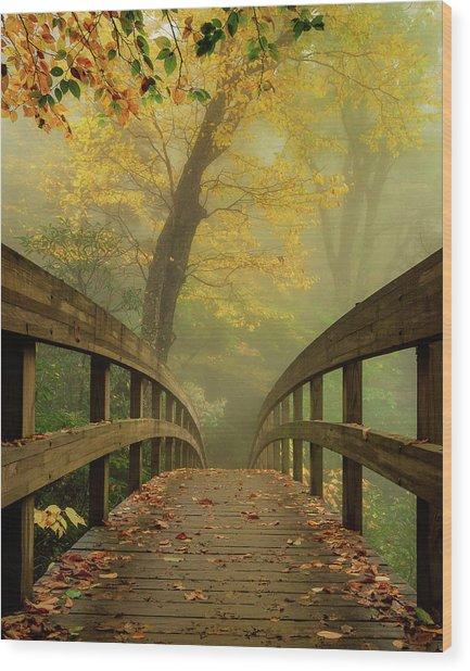 Tanawha Trail Blue Ridge Parkway - Foggy Autumn Wood Print