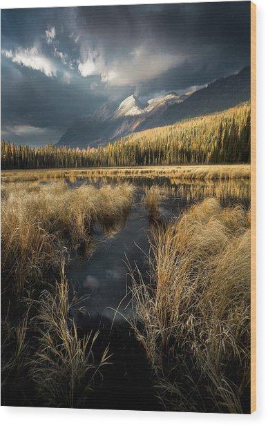 Tapering Rains / Whitefish, Montana  Wood Print