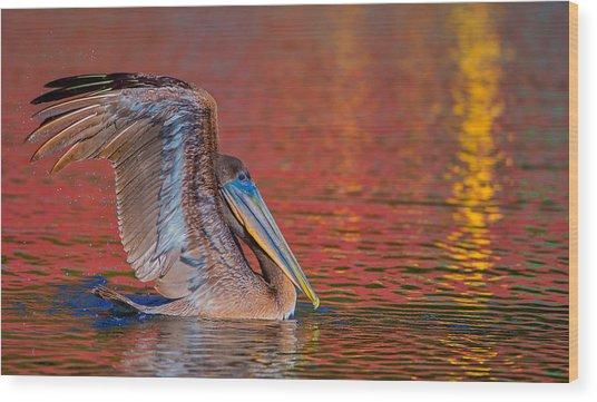 Tchefuncte Pelican Wood Print