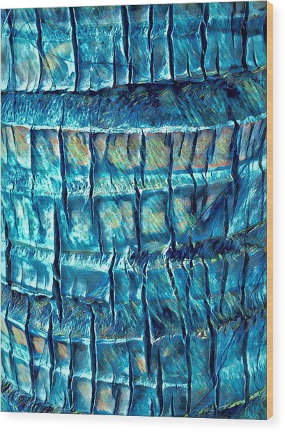 Teal Palm Bark Wood Print