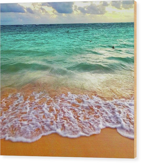 Teal Shore  Wood Print