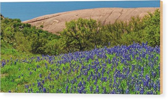 Texas Bluebonnets And Enchanted Rock 2016 Wood Print