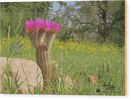 Texas Lace Wood Print