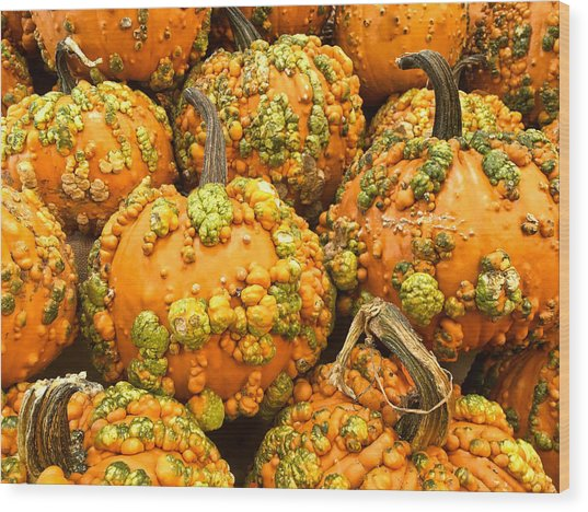 Textured Pumpkins  Wood Print