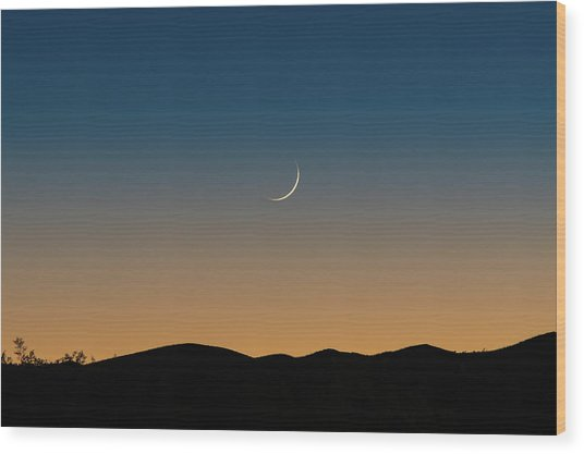 That Desert Moon Wood Print
