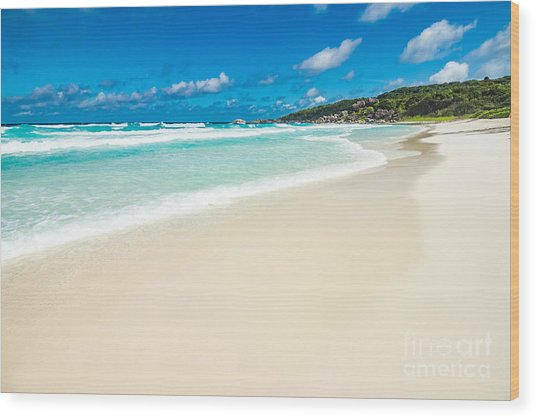 The Beach Called Grande Anse Located On Wood Print