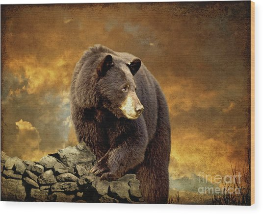 Wood Print featuring the photograph The Bear Went Over The Mountain by Lois Bryan