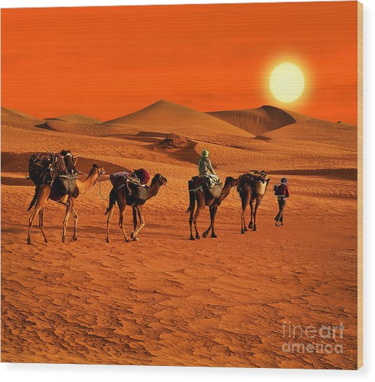 The Berbesky Tribe Passes The Desert In Wood Print