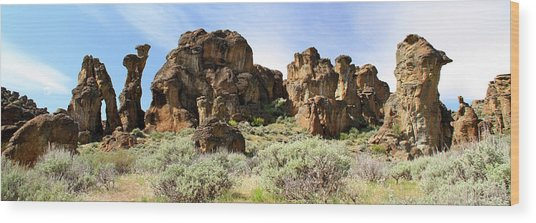 Arches Hoodoos And Castles The Big Picture Little City Of Rocks Wood Print