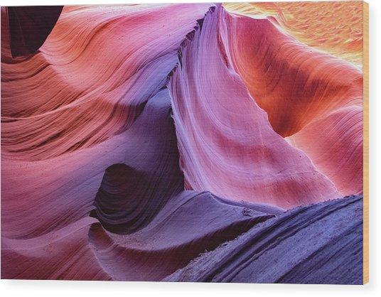 The Body's Earth  Wood Print