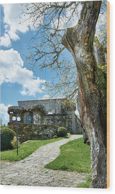 The Castle Of Villamarin Wood Print